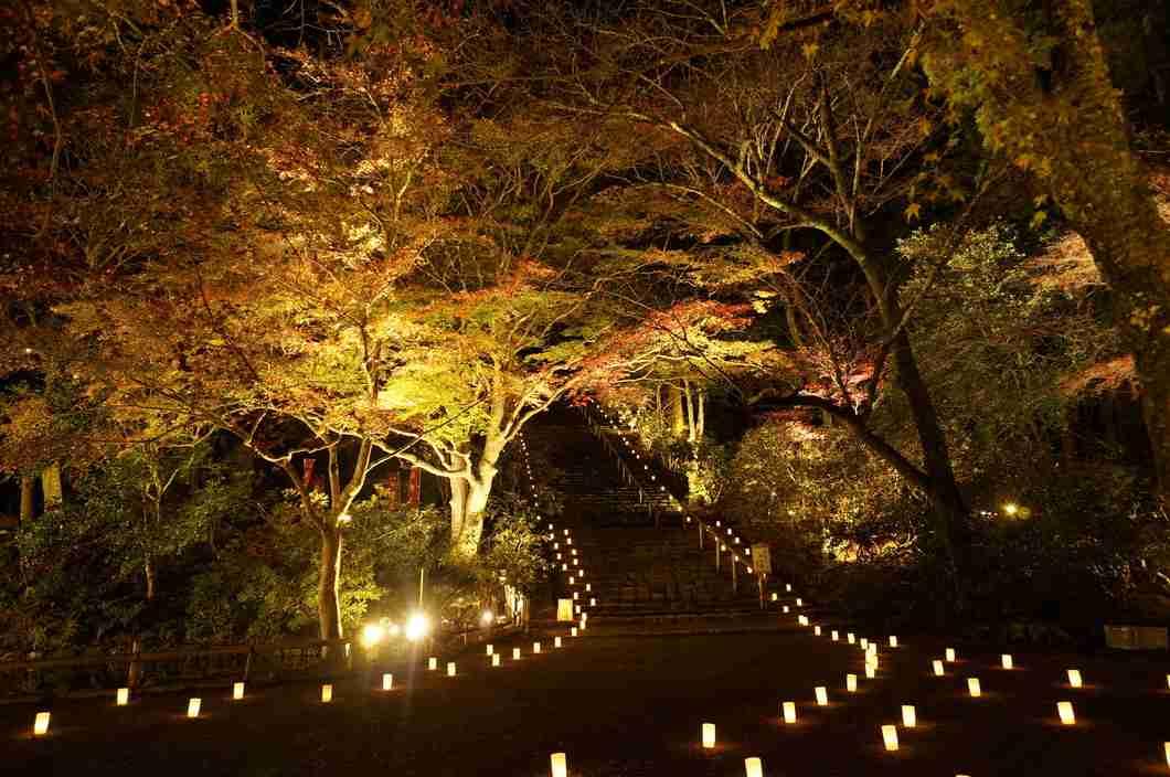 秋の綺麗な風景ください