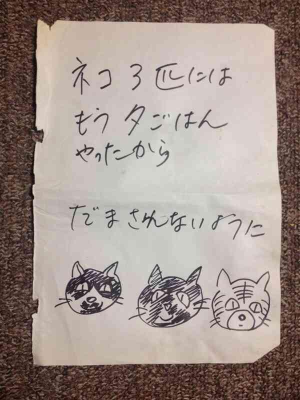 猫の種類と色と性格の関係は?
