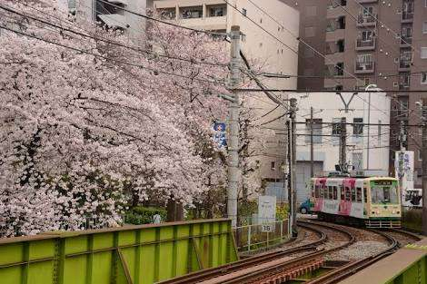 東京都あるある