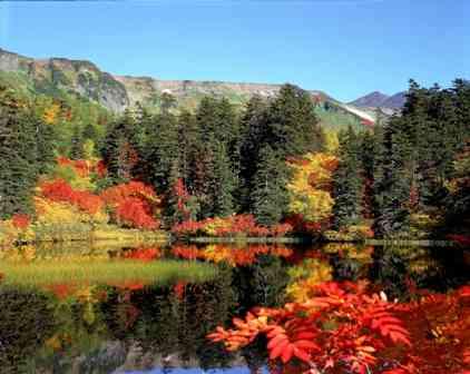 秋冬ひとり旅スポット