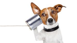 コールセンター・電話業務あるある