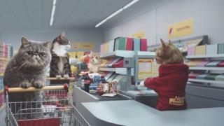 スーパーのレジで働いている(いた)人!話しましょう!