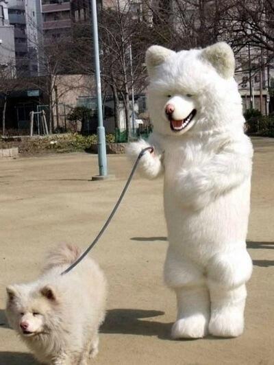 【画像】いろんなペットが見たい!