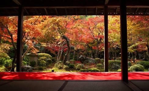 日本のここが一番好きってとこ