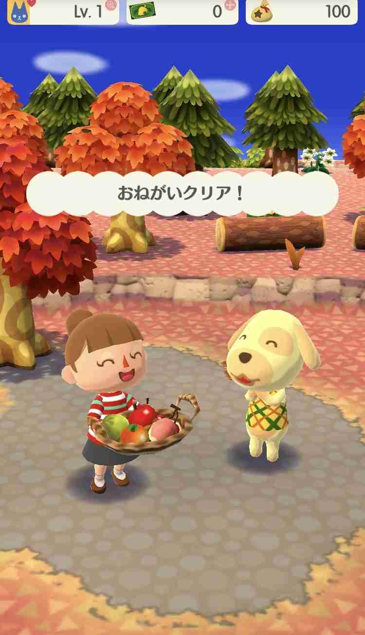 『どうぶつの森 ポケットキャンプ』配信日が11月22日に決定!