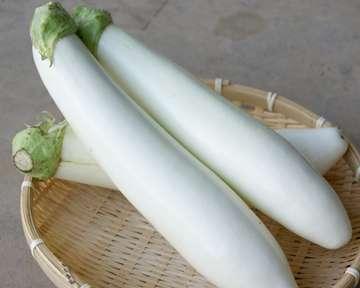 白い食べ物を貼るトピ