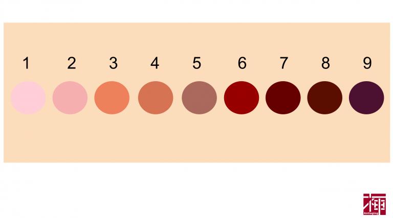 乳首の色について。