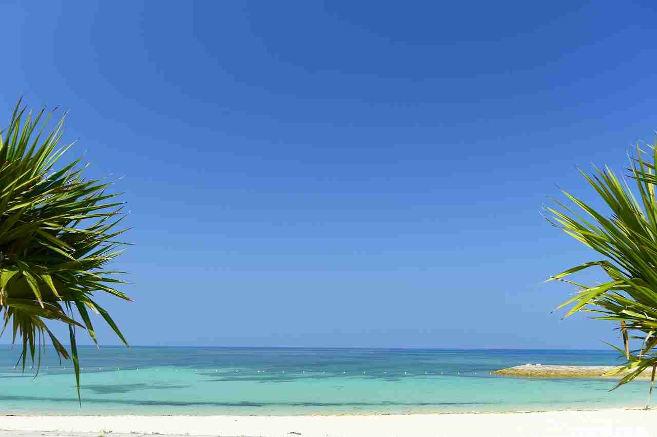 感動したビーチ