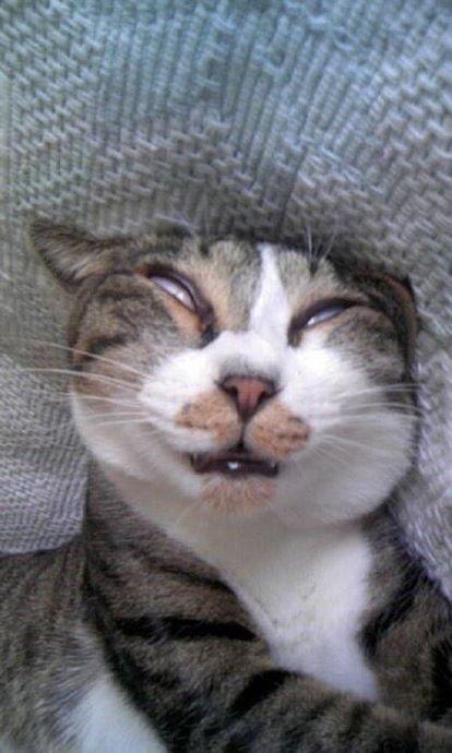 自分の寝顔披露!