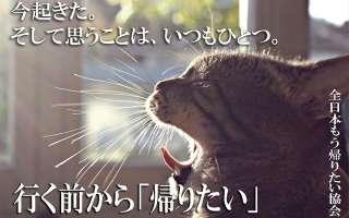 【画像】全日本もう帰りたい協会