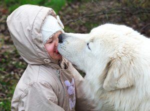 自分の子供だけどキスはイヤ