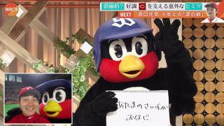 つば九郎ファン集まれ〜!