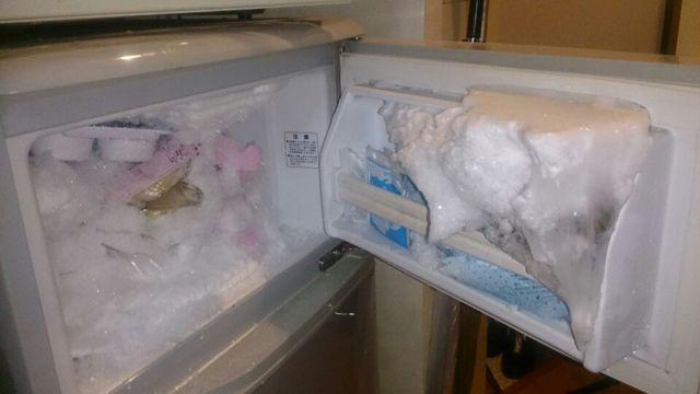 わが家の冷凍庫にしかないと思われる食品