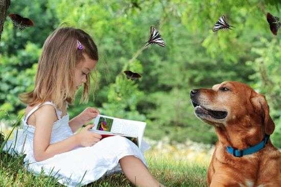 楽しそうな犬の画像トピ