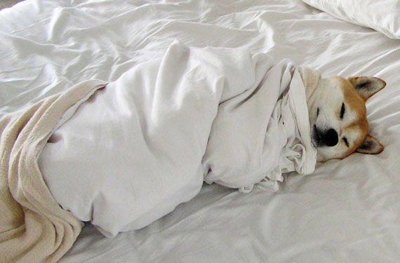 寒い時の起床方法