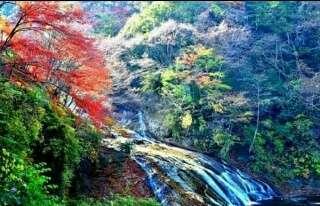 【チバニアン】地球史に「千葉時代」誕生へ 日本初の地質年代名、国際審査でイタリア破る