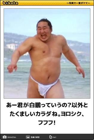 お相撲さんアルバムー年忘れ癒し編ー