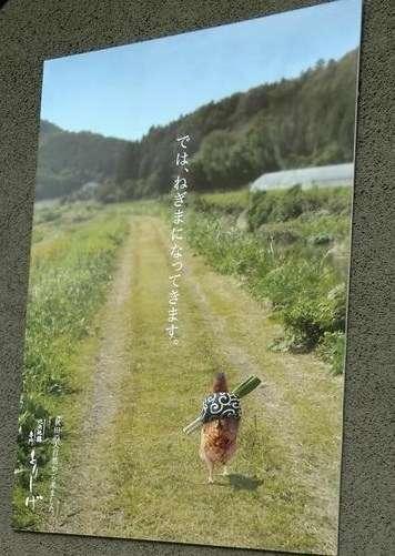 【ネタ】鍋の季節なのでネギをスタイリッシュに持って帰る方法教えて