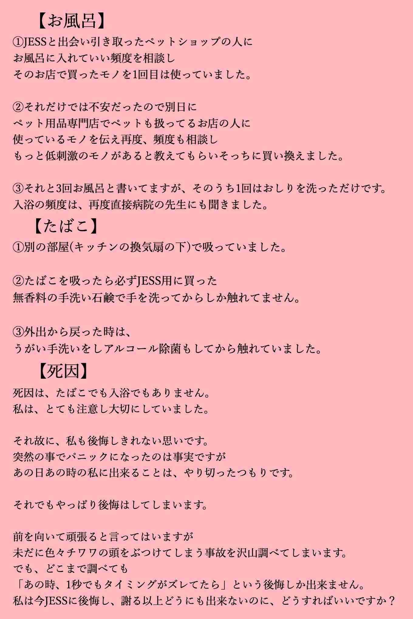 モデル・葉山潤奈「私は犬殺しではありません」 ネット中傷に反論「あれは不慮の事故」