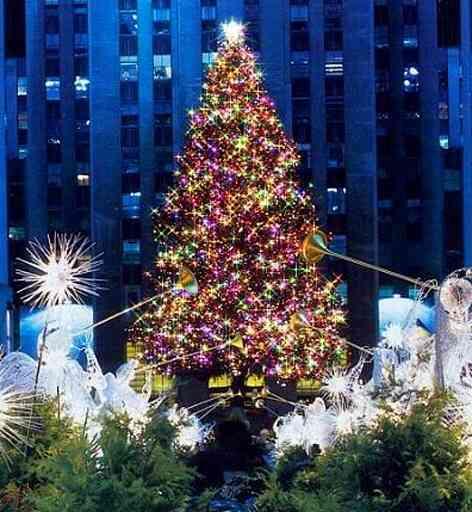 実家暮らしのクリスマス【適齢期】