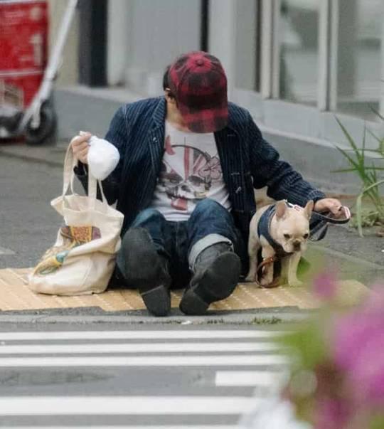 草なぎ剛 愛犬クルミちゃんが1歳にyoutubeでお祝いの唄を予告