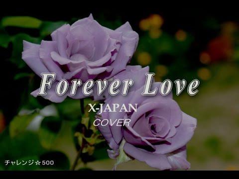 愛は永遠に続かないものですか?