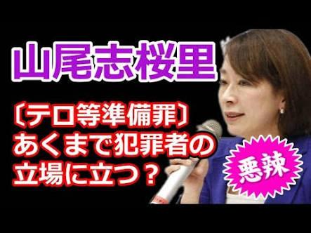 山尾志桜里議員の報道をめぐり、小林よしのり「バイキングを叩け!」