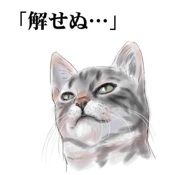 【ガールズ部隊】実況&報告