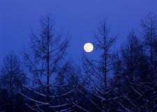 冬の空がすきな人☆