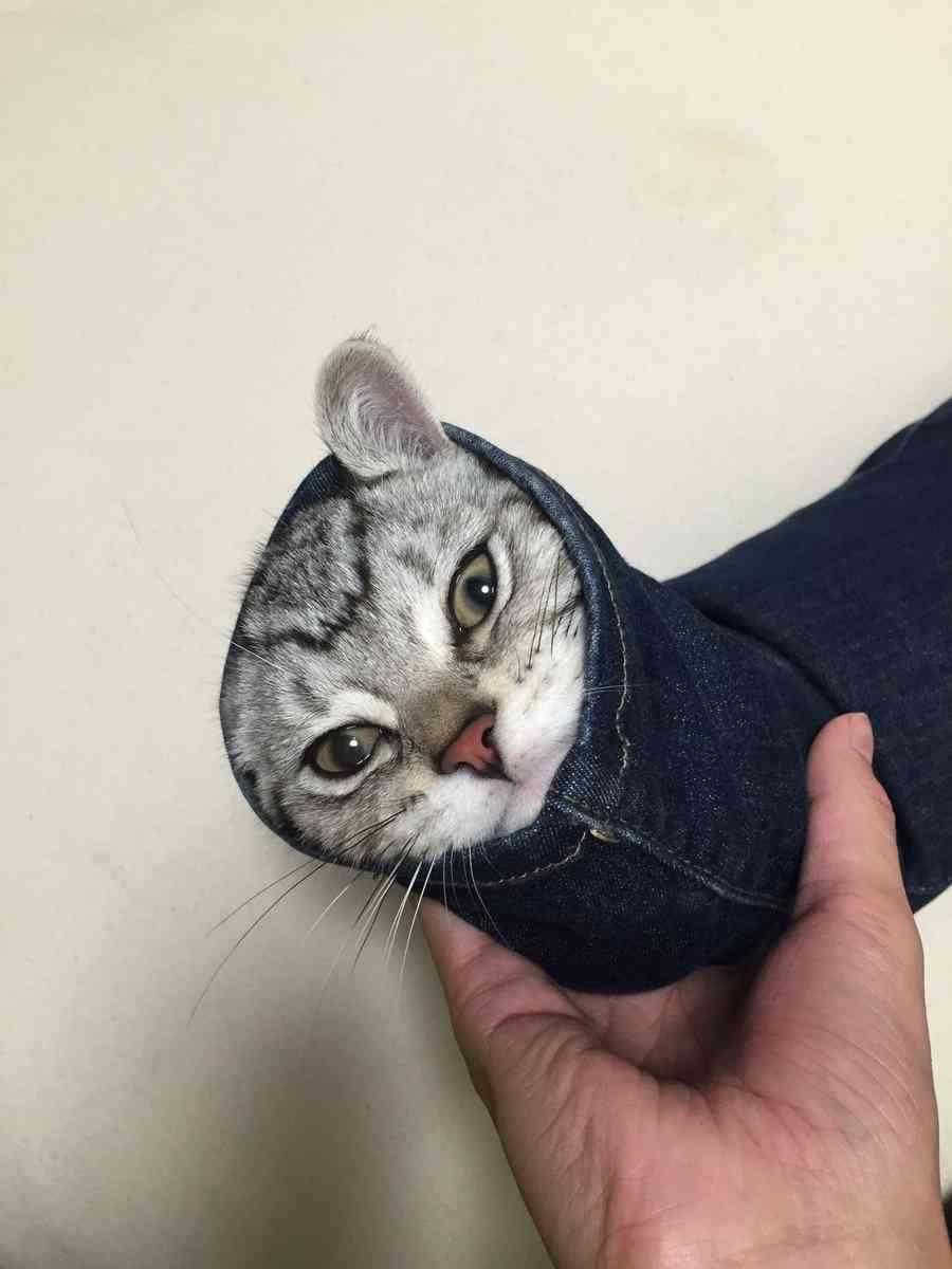 どこのスキニー履いてますか?