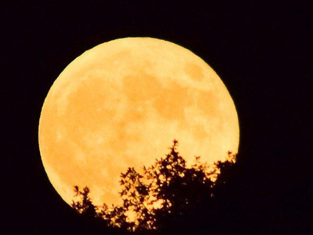 今夜は今年最大の満月ですね。皆さんの地域では見えますか?