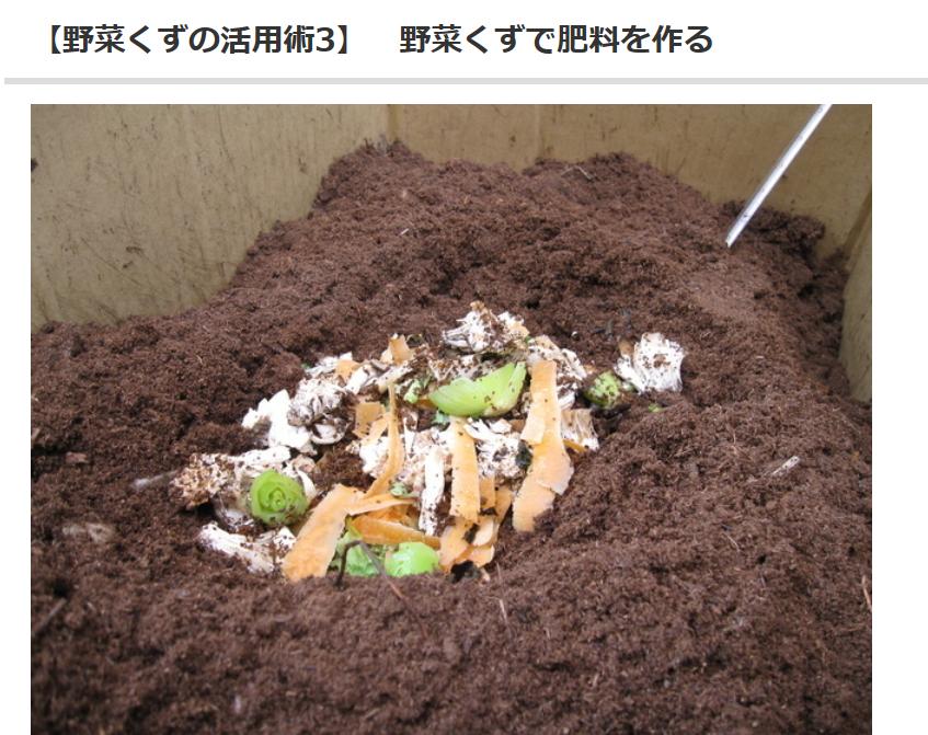 野菜の皮の再利用