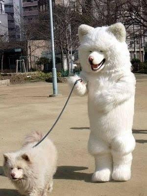 【戌年】犬の画像を貼るトピ