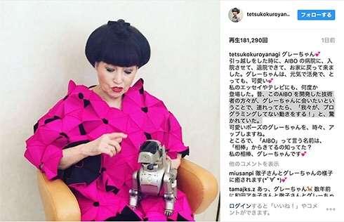 黒柳徹子が溺愛するAIBO 和田アキ子の影響で「機能を失っていく」