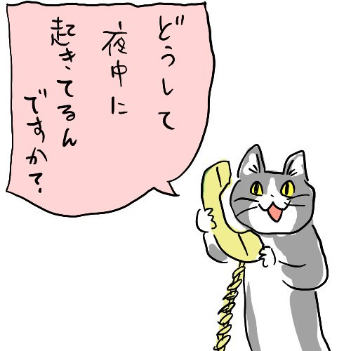 冬休み子ども科学電話相談好きな方