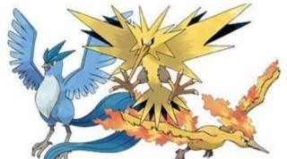 鳥のキャラクター集合!!!