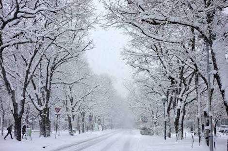 【やっぱり冬が好き】一年で1番寒いこの時期でさえ❄︎❄︎❄︎