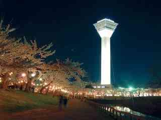 【子連れ】北海道旅行のおすすめ教えてください