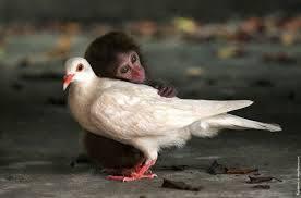 【非エロ】愛情を感じる画像