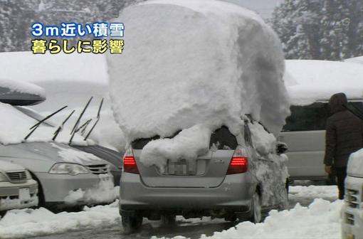 冬が嫌い!!!