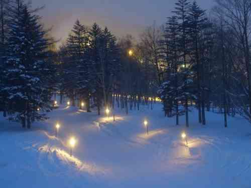 雪国在住の方、雪に慣れない私たちに雪国の厳しさを教えてください!