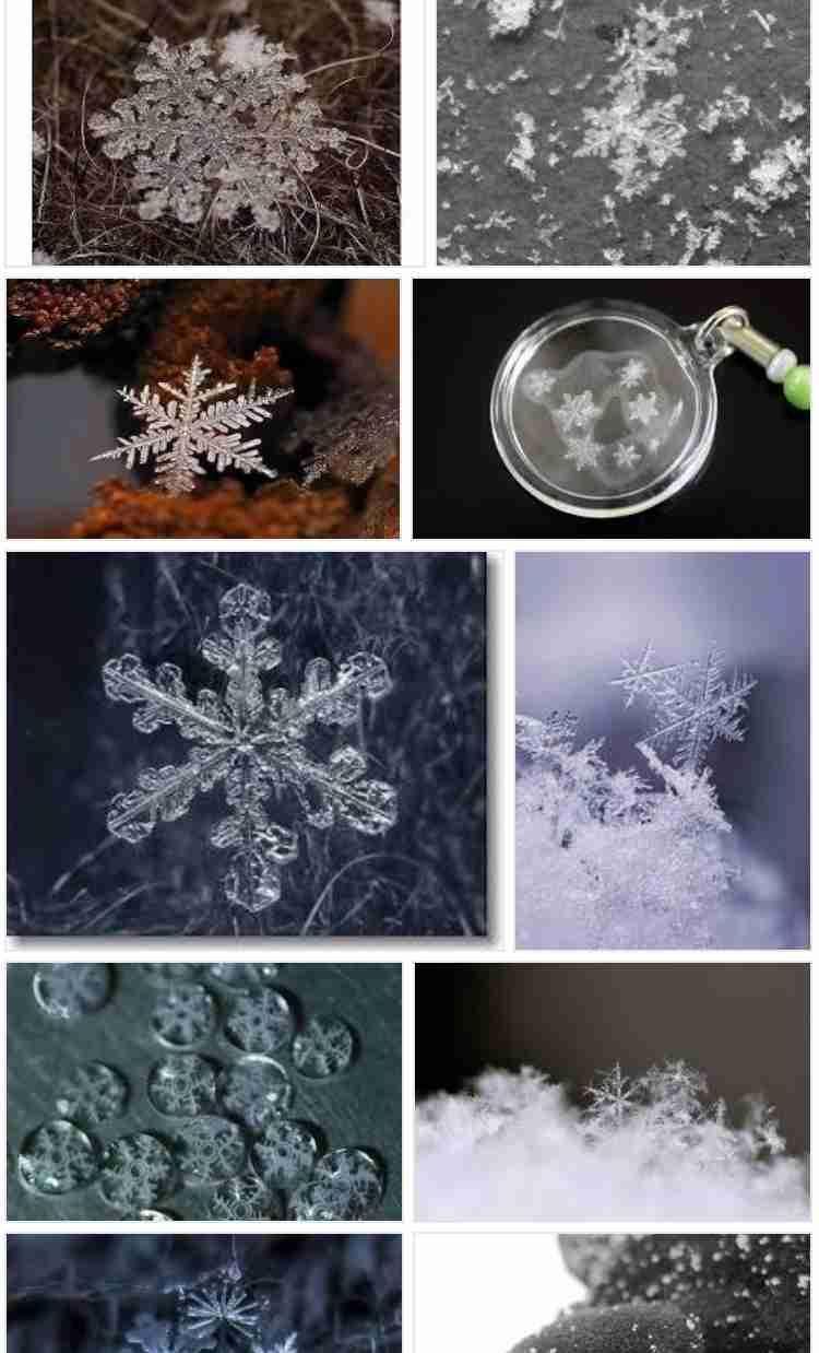 まるで神様からの贈り物 ビックリするほど大きな「氷の結晶」が神社で目撃される