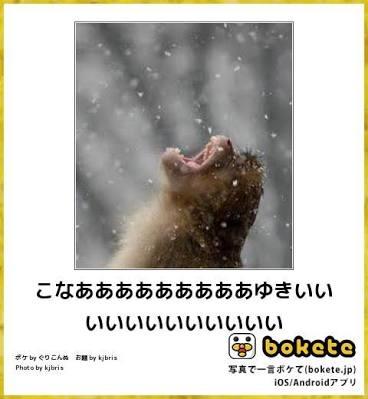 真冬に聴きたい曲