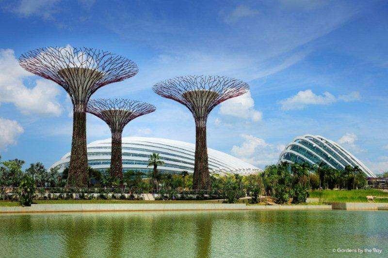 シンガポールに行ったことがある人!