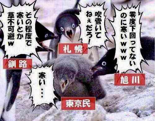 東京に雪が降ると、こんなことがあるある
