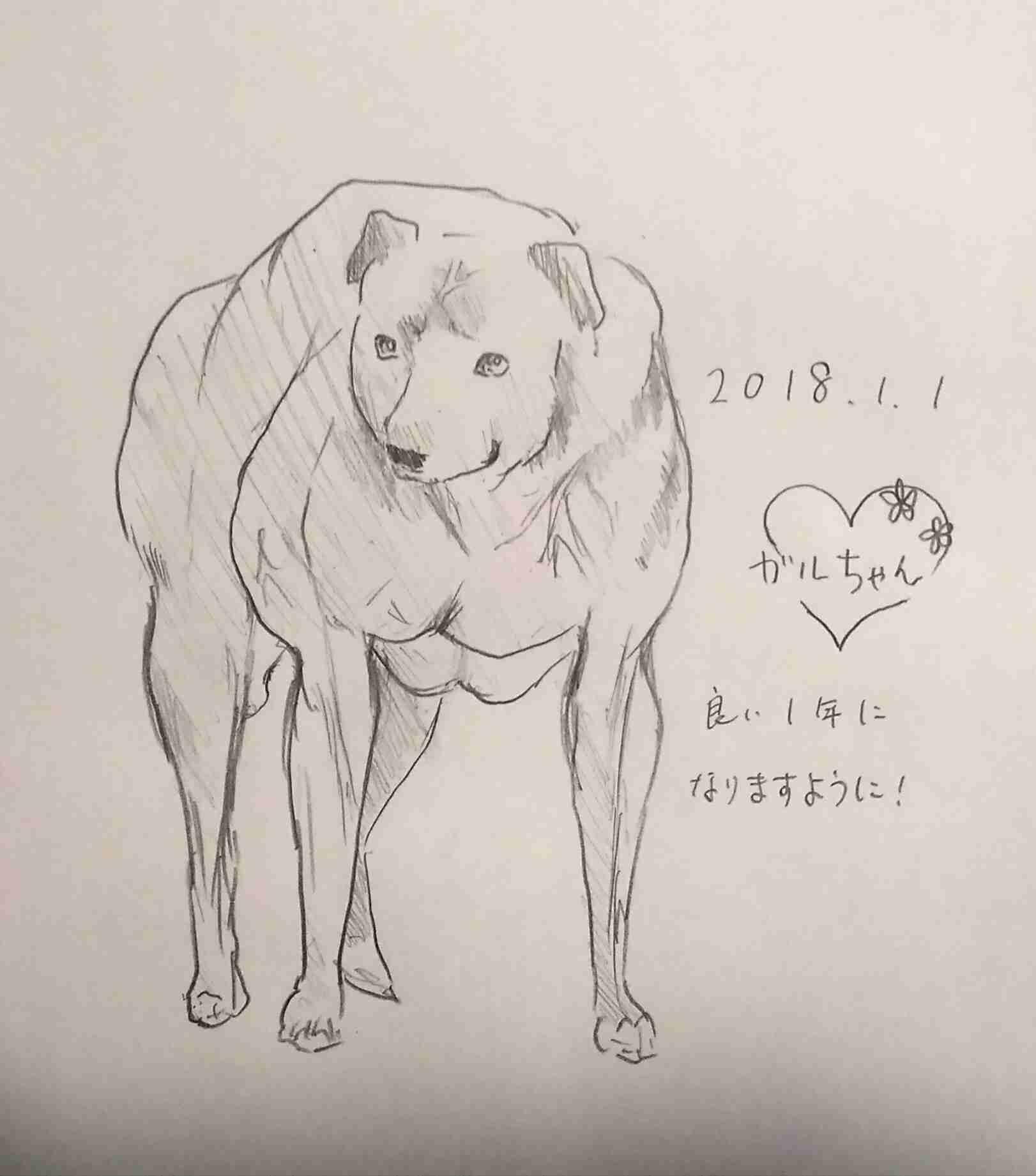 【お絵描き2018】犬、上手に書けますか?【戌年】