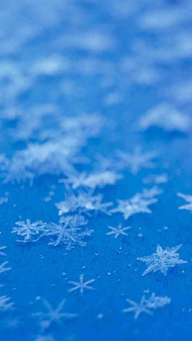 美しい雪の結晶が集まるトピ