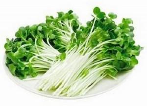 野菜高騰中!でもサラダ食べたい