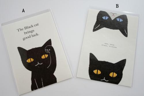 黒猫好きな人ー!