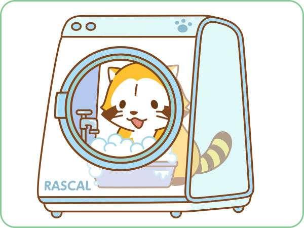 洗濯物の種類ごとに洗いますか?